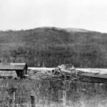 Miller and Ayre Sawmill-1905 1