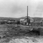 Miller and Ayre Sawmill-1905 2